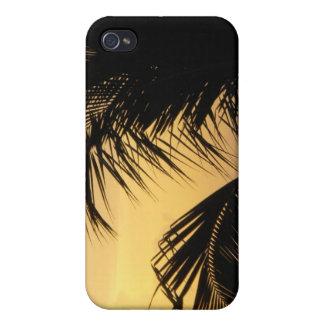 Caso del iphone de la puesta del sol de la palmera iPhone 4 funda