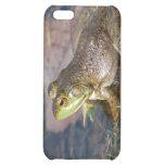 Caso del iPhone de la rana