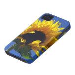Caso del iPhone de la salida del sol del girasol iPhone 4 Carcasas