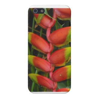 Caso del iPhone de la selva tropical de Heliconia iPhone 5 Carcasas