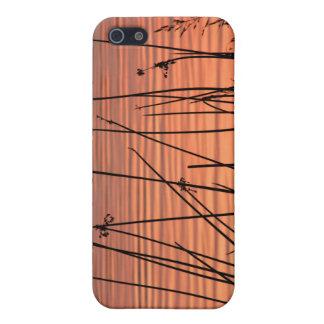 Caso del iPhone de la silueta de la puesta del sol iPhone 5 Cárcasas