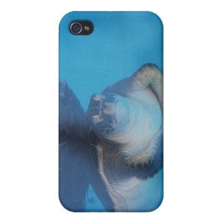 Caso del iPhone de la tortuga de mar del bebé iPhone 4 Funda