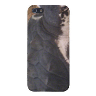Caso del iPhone de la tortuga iPhone 5 Cobertura