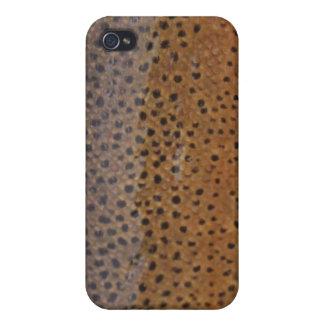 Caso del iPhone de la trucha de Brown iPhone 4 Fundas