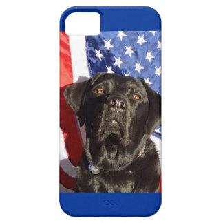 Caso del iPhone de Labrador y de la bandera iPhone 5 Protectores