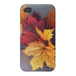 Caso del iPhone de las hojas de otoño iPhone 4 Protector