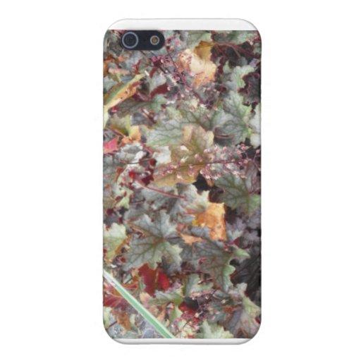 Caso del iPhone de las hojas de otoño iPhone 5 Carcasas