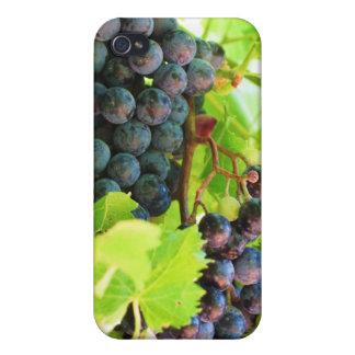 Caso del iPhone de las uvas iPhone 4 Protector