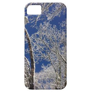 Caso del iphone de los árboles Nevado iPhone 5 Carcasa