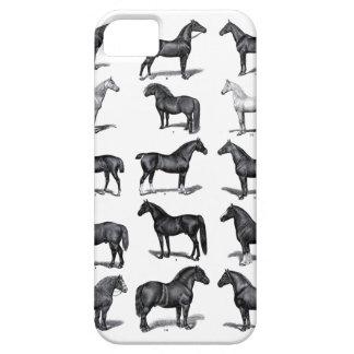 Caso del iPhone de los caballos del vintage Funda Para iPhone SE/5/5s