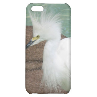 Caso del iPhone de los Egrets nevados
