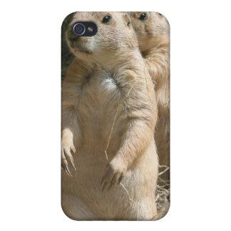 Caso del iPhone de los pares del perro de las prad iPhone 4 Carcasas