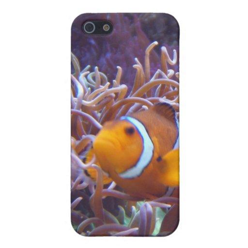 Caso del iPhone de los pescados del payaso iPhone 5 Funda