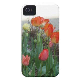 Caso del iPhone de los tulipanes de la playa iPhone 4 Case-Mate Cobertura