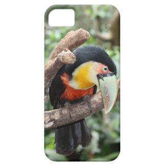 Caso del iPhone de Toucan Funda Para iPhone SE/5/5s