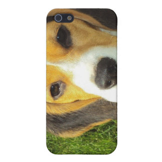 Caso del iPhone del beagle iPhone 5 Fundas