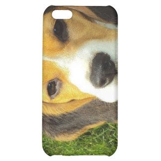 Caso del iPhone del beagle