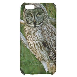 Caso del iPhone del búho de gran gris