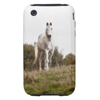 Caso del iPhone del caballo blanco iPhone 3 Tough Carcasas