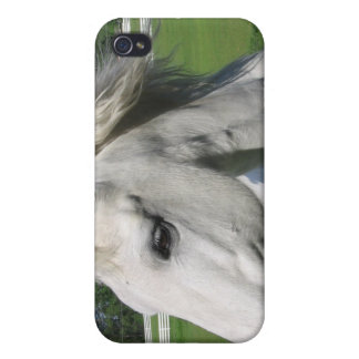 Caso del iPhone del caballo blanco iPhone 4 Protectores