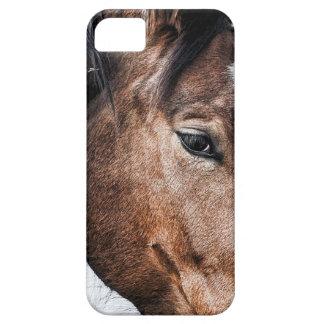 Caso del iphone del caballo iPhone 5 carcasa
