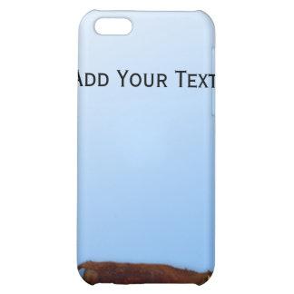 Caso del iPhone del cielo bovino y azul