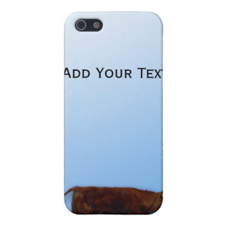 Caso del iPhone del cielo bovino y azul iPhone 5 Cárcasa