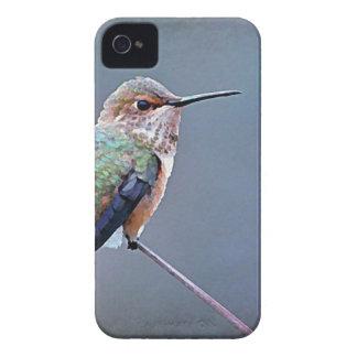 Caso del iphone del colibrí iPhone 4 carcasas