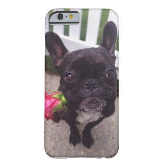 Caso del iPhone del dogo francés Funda De iPhone 6 Barely There