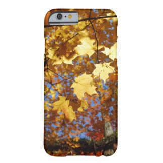 Caso del iPhone del follaje de otoño Funda Para iPhone 6 Barely There