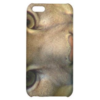 Caso del iPhone del gato de la montaña del puma