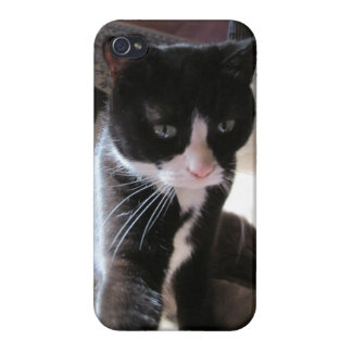 caso del iphone del gato iPhone 4 funda