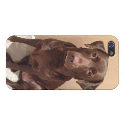 Caso del iPhone del laboratorio del chocolate iPhone 5 Funda
