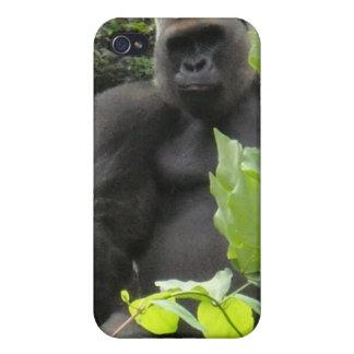 Caso del iphone del mono del gorila iPhone 4 fundas