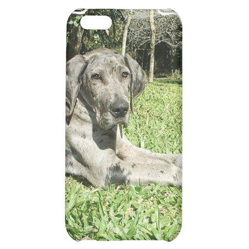 Caso del iPhone del perrito de great dane