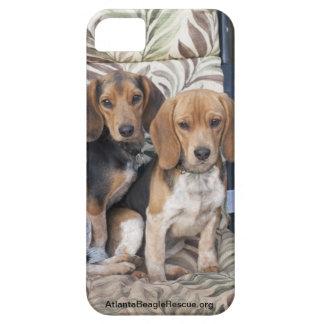 Caso del iPhone del perrito del beagle iPhone 5 Cárcasas