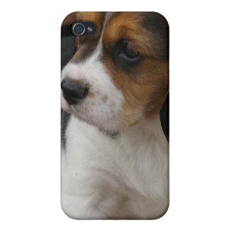 Caso del iPhone del perrito del beagle iPhone 4 Carcasa