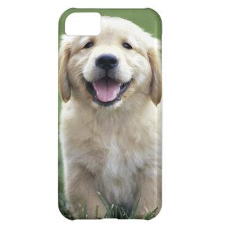 Caso del iPhone del perrito del golden retriever