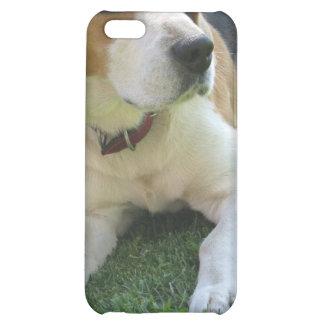Caso del iPhone del perro de caza del beagle