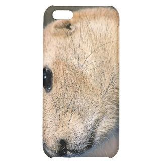 Caso del iPhone del perro de las praderas