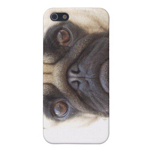 Caso del iPhone del perro del barro amasado iPhone 5 Carcasas