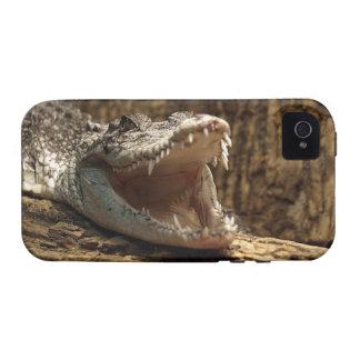 Caso del iPhone del reptil del cocodrilo del Vibe iPhone 4 Carcasas