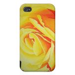 Caso del iPhone del rosa amarillo iPhone 4 Protector
