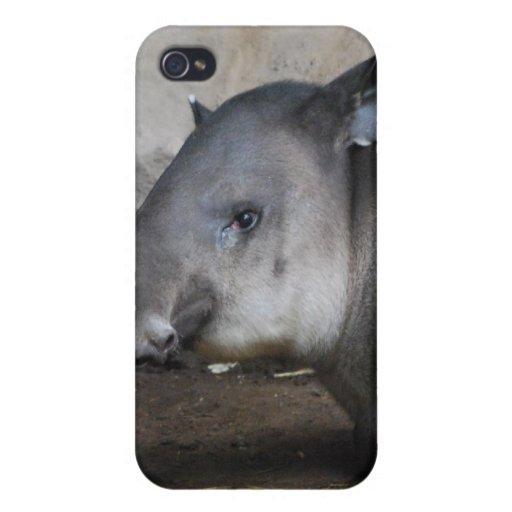 Caso del iPhone del Tapir iPhone 4 Fundas