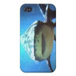 Caso del iPhone del tiburón iPhone 4 Protector
