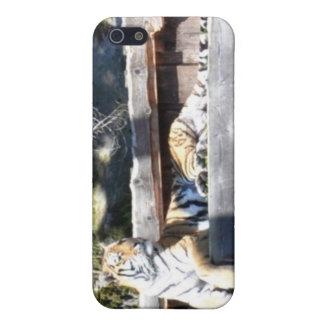 Caso del iPhone del tigre de Bengala iPhone 5 Carcasa
