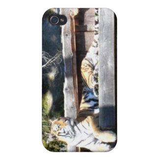 Caso del iPhone del tigre de Bengala iPhone 4 Carcasas