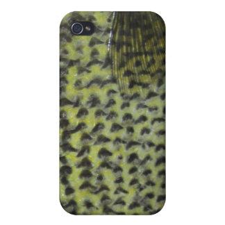 Caso del iPhone del tipo de pez iPhone 4/4S Carcasas