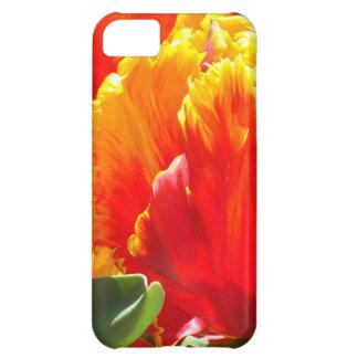 Caso del iPhone del tulipán de Colorburst Funda Para iPhone 5C