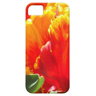 Caso del iPhone del tulipán de Colorburst iPhone 5 Carcasa
